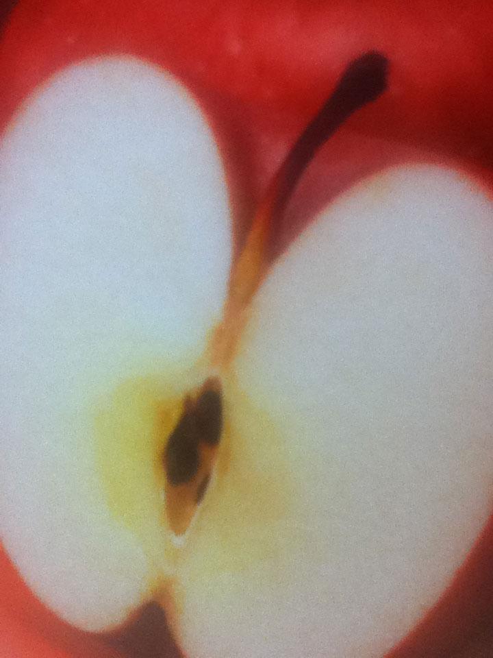 100%果汁の林檎ジュースのパッケージ